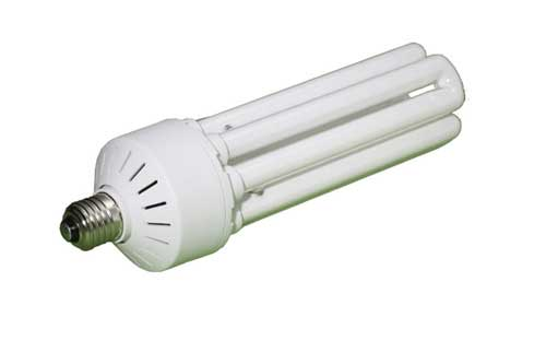 Lastolite Colour Corrected 85W Fluorescent Bulb