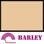Colorama Paper Roll 135x1100cm Barley 14