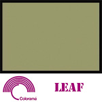 Colorama Paper Roll 135x1100cm Leaf 97