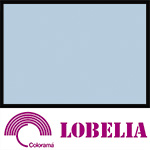 Colorama Paper Roll 2.72 x 11m Lobelia 77