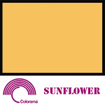 Colorama Paper Roll 135x1100cm Sunflower 94
