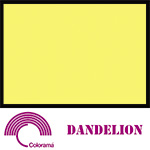 Colorama Paper Roll 2.72 x 11m Dandelion 16