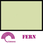 Colorama Paper Roll 2.72 x 11m Fern 12